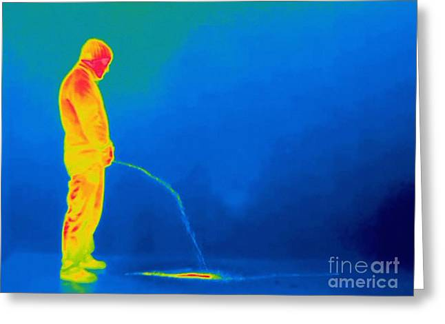 Urinating Greeting Cards - Man Urinating, Thermogram Greeting Card by Thierry Berrod, Mona Lisa Production/ Science Photo Library