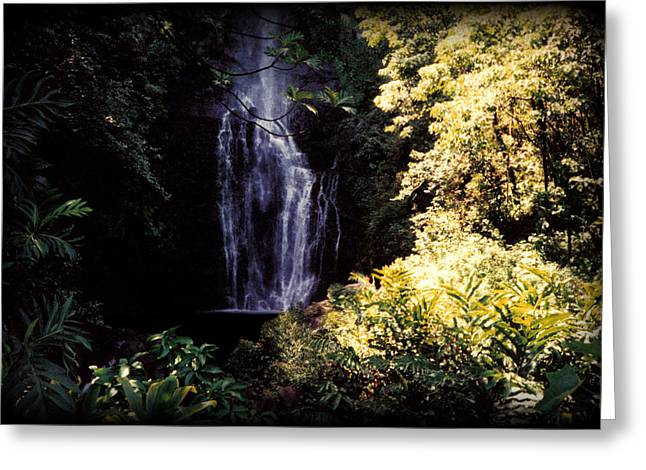 Palms Greeting Cards - Maui Waterfall Greeting Card by J D Owen