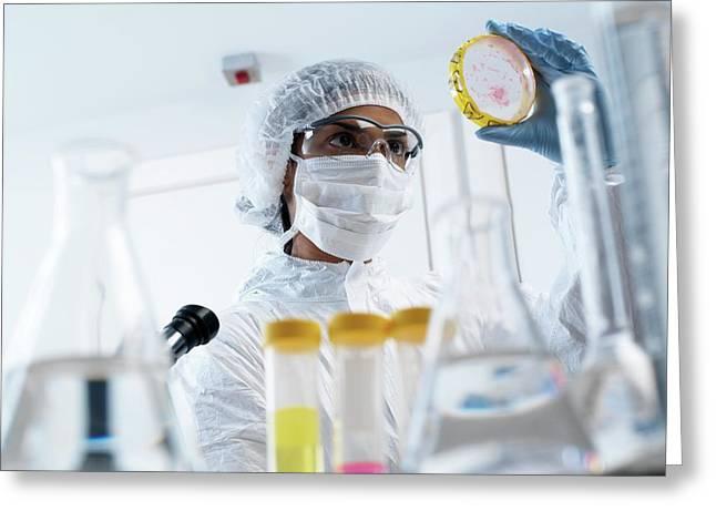 Microbiology Greeting Card by Tek Image