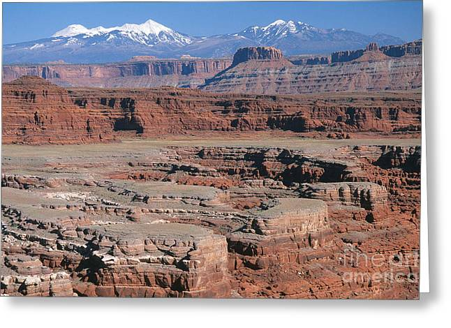 Snow-covered Landscape Greeting Cards - Moab Greeting Card by Chris Selby