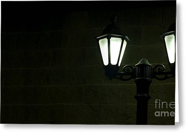 Peaceful Scene Greeting Cards - Night picture of the lamp in the park Greeting Card by Deyan Georgiev