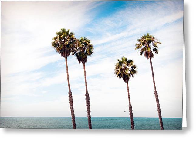 Clemente Greeting Cards - 4 of a Kind Greeting Card by Aron Kearney Fine Art Photography