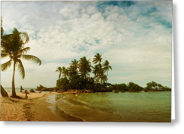 Sao Greeting Cards - Palm Trees On The Beach In Morro De Sao Greeting Card by Panoramic Images