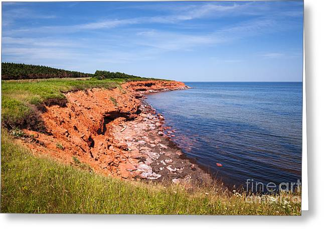 Gables Greeting Cards - Prince Edward Island coastline Greeting Card by Elena Elisseeva