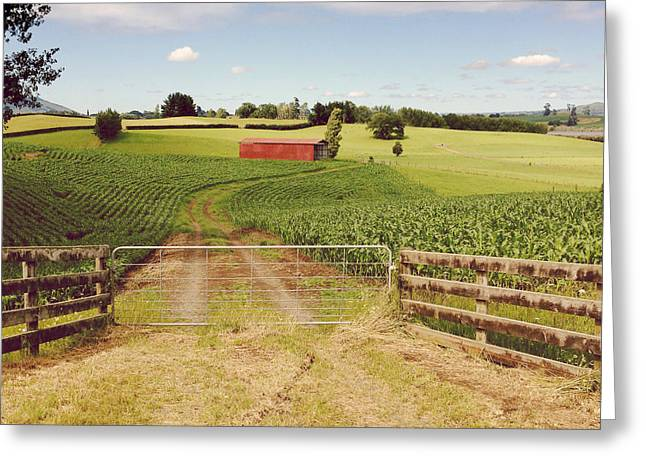 Shed Photographs Greeting Cards - Red barn Greeting Card by Les Cunliffe
