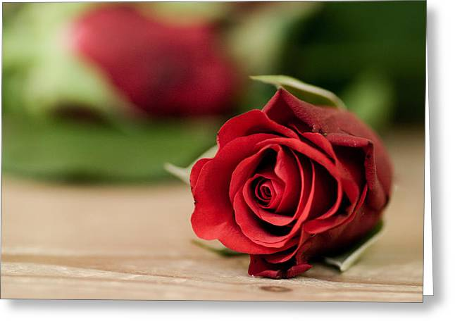 Kjona Greeting Cards - Rose Greeting Card by Mirra Photography