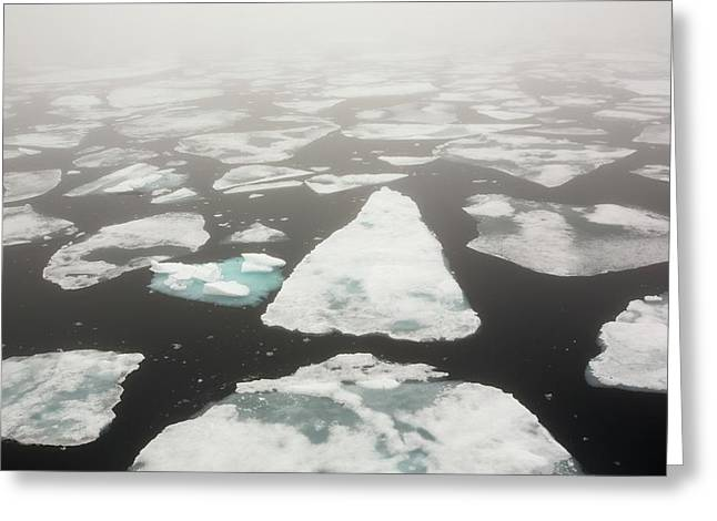 Rotten Sea Ice At Over 80 Degrees North Greeting Card by Ashley Cooper