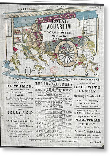 Royal Aquarium Greeting Card by British Library