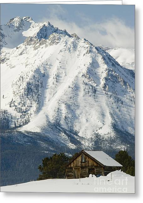 Old Cabins Greeting Cards - Sawtooth Mountains Greeting Card by William H. Mullins