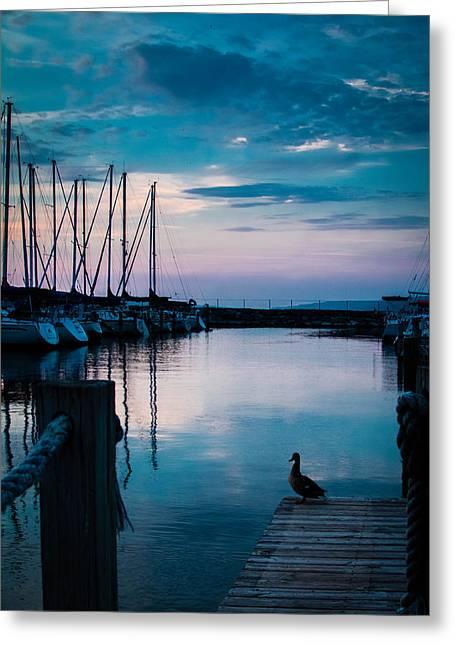 Ocean Art Photography Greeting Cards - Serenity Greeting Card by Sara Frank