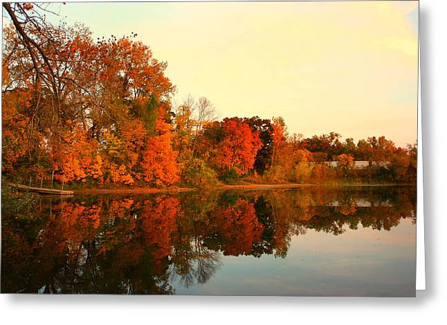 Best Sellers -  - Trees Reflecting In Water Greeting Cards - Shady Oak Lake  Greeting Card by Amanda Stadther