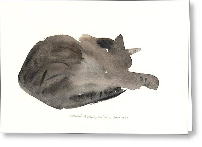 Napping Cat Greeting Cards - Sleeping cat Greeting Card by Claudia Hutchins-Puechavy