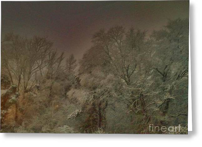 Snowy Night Greeting Card by Janice Spivey