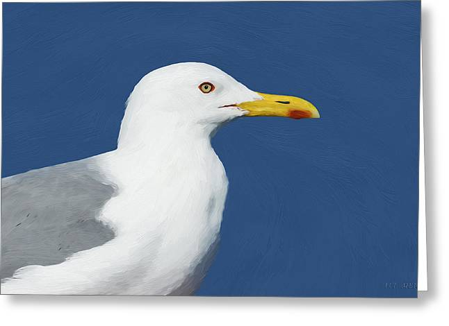 Seabirds Greeting Cards - Steppe Gull Greeting Card by Avi Meir