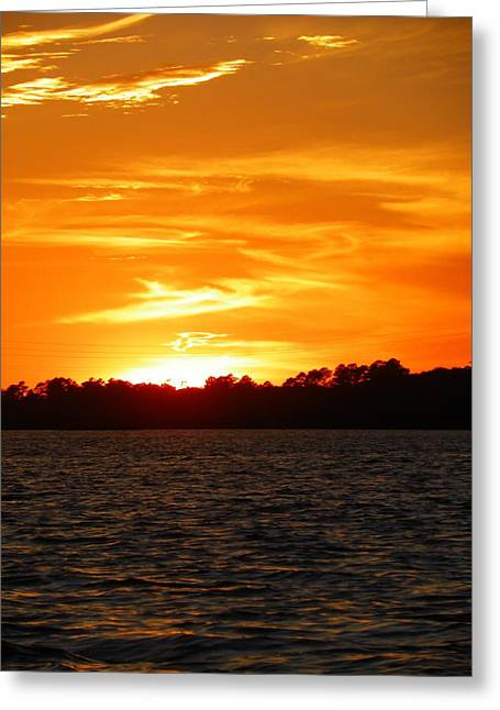 Stick Greeting Cards - Sunset Greeting Card by Lisa Wooten