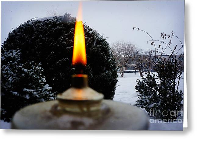 Spruce Cone Greeting Cards - The Candle in the Snow Greeting Card by Adam Asar