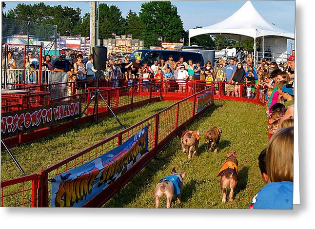 Landscape Framed Prints Greeting Cards - The Pig Races Greeting Card by Carol Toepke
