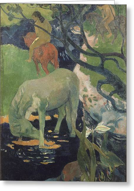 Sea Horse Greeting Cards - The White Horse Greeting Card by Paul Gauguin