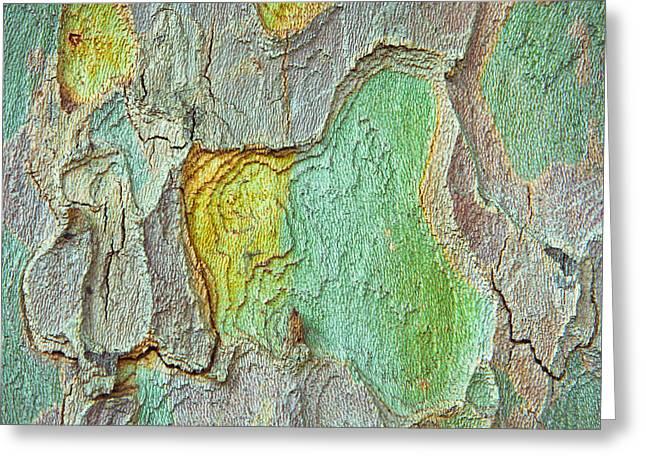 Jigsaw Greeting Cards - Tree bark Greeting Card by Tom Gowanlock