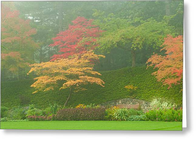 Vancouver Greeting Cards - Trees In A Garden, Butchart Gardens Greeting Card by Panoramic Images