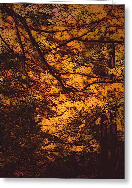 Fall Photos Paintings Greeting Cards - Splash of Color Greeting Card by Michael James Greene