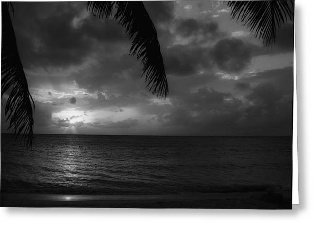 Domingo Greeting Cards - Tropical Sunset Greeting Card by Mountain Dreams