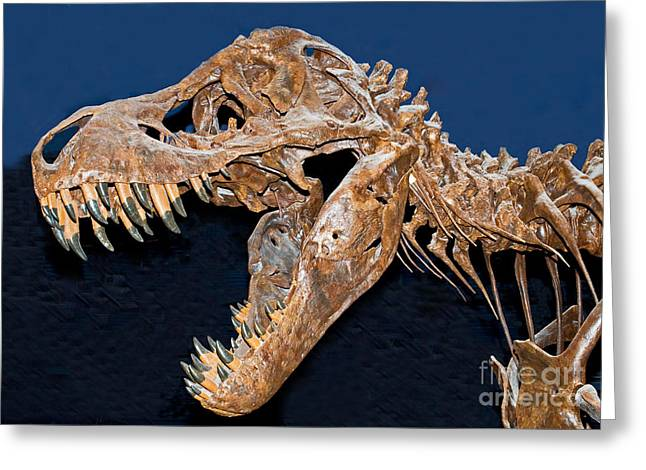 Tyrant Greeting Cards - Tyrannosaurus Rex Greeting Card by Millard H. Sharp