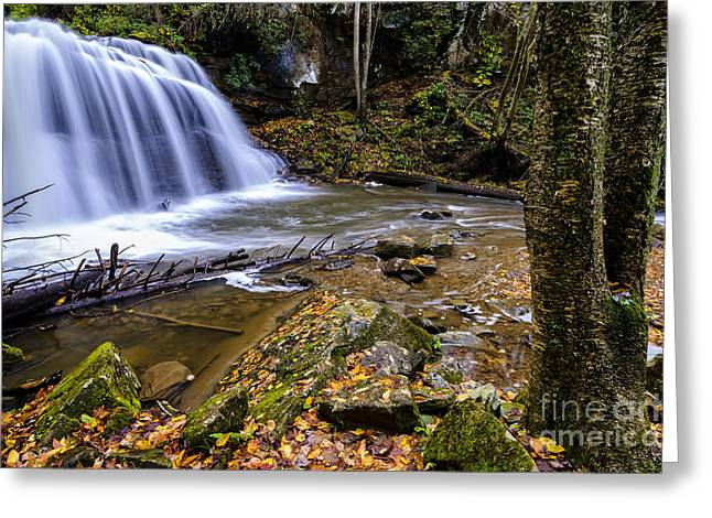 Allegheny Greeting Cards - Upper Falls Holly River Greeting Card by Thomas R Fletcher