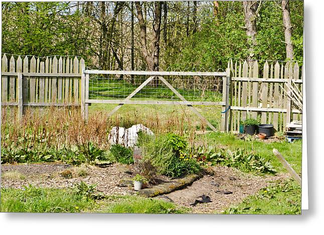 Patch Greeting Cards - Vegetable garden Greeting Card by Tom Gowanlock