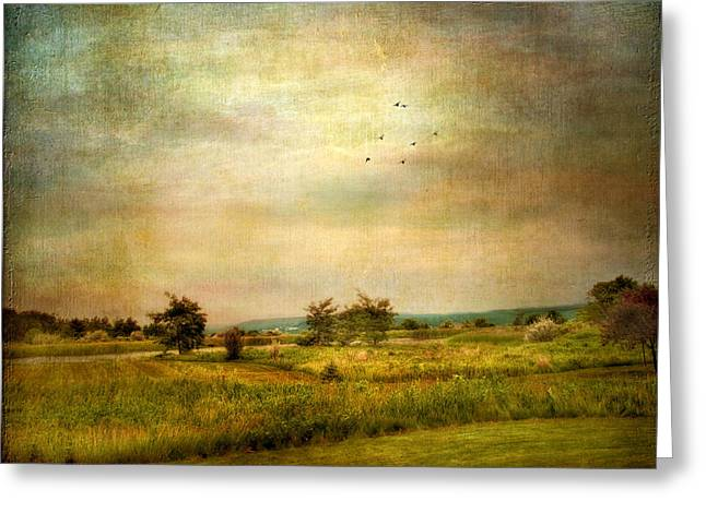 Ithaca Greeting Cards - Vintage Valley View Greeting Card by Jessica Jenney