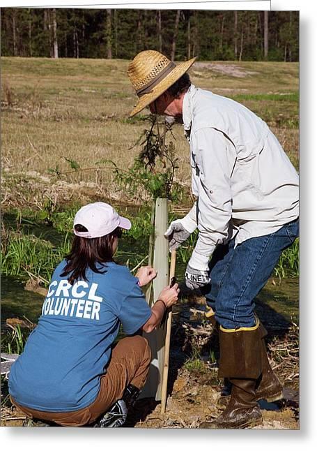 Volunteers Planting Trees Greeting Card by Jim West