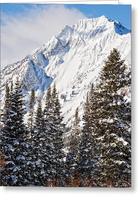 Little Cottonwood Canyon Greeting Cards - Wasatch Mountains in Winter Greeting Card by Utah Images