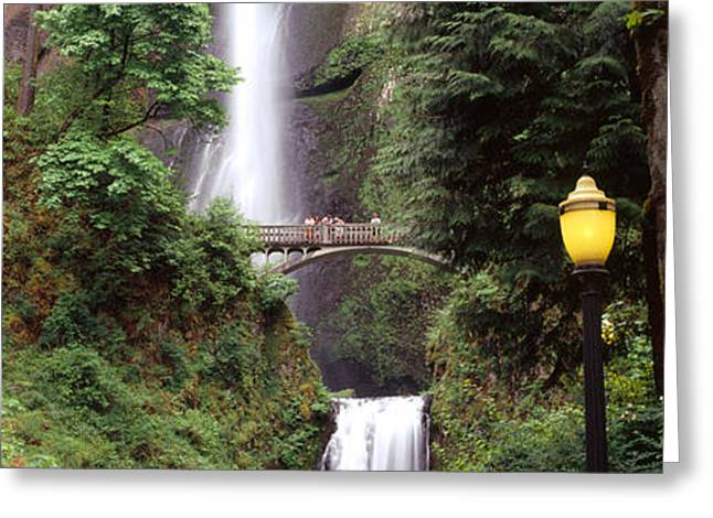 Hood River Greeting Cards - Waterfall In A Forest, Multnomah Falls Greeting Card by Panoramic Images