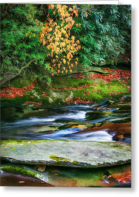 Gatlinburg Tennessee Greeting Cards - Waterfalls Great Smoky Mountains Painted  Greeting Card by Rich Franco