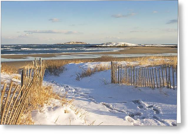 Sea Shore Greeting Cards - Winter at Popham Beach State Park Maine Greeting Card by Keith Webber Jr