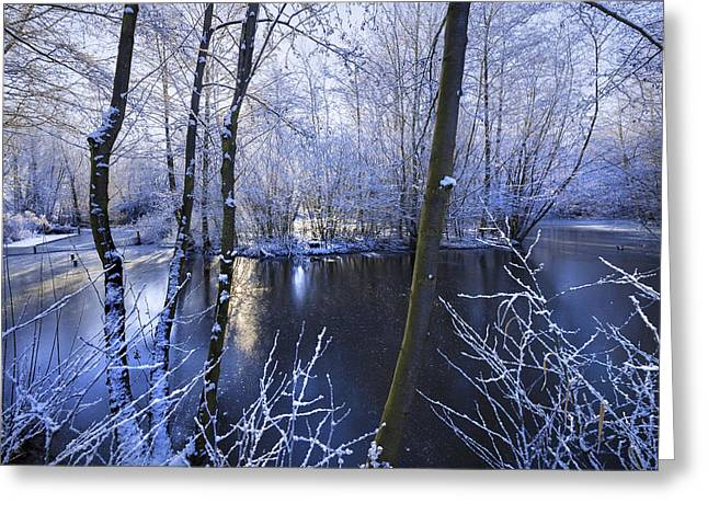 Snowy Stream Greeting Cards - Winter Greeting Card by Svetlana Sewell