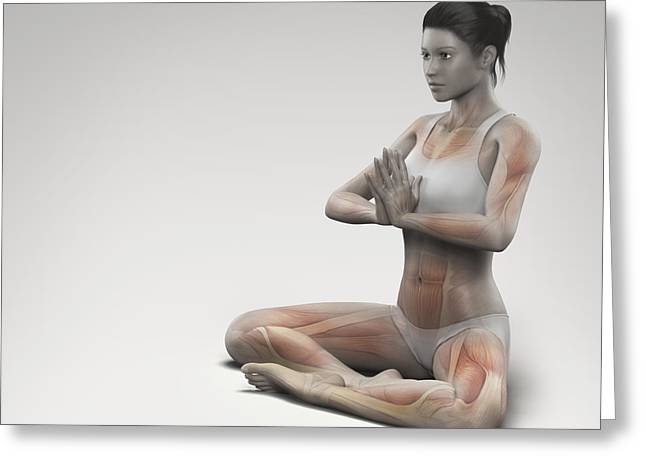Physical Body Greeting Cards - Yoga Meditation Pose Greeting Card by Science Picture Co