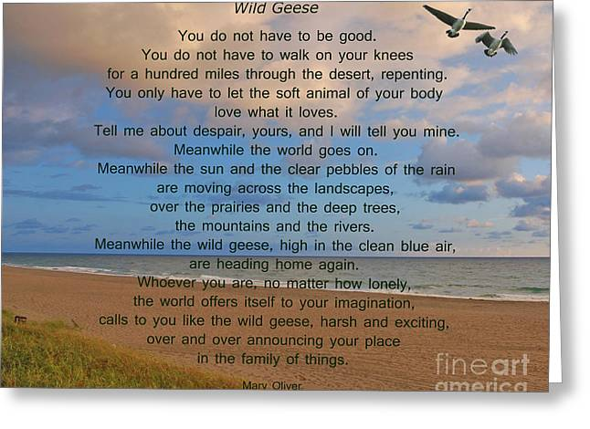 Wild Goose Greeting Cards - 40- Wild Geese Mary Oliver Greeting Card by Joseph Keane