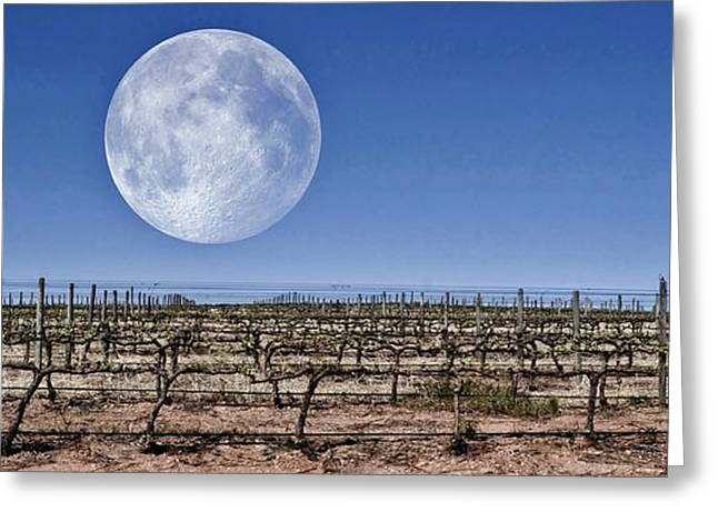 Blue Grapes Greeting Cards - Full Moon Greeting Card by Werner Lehmann