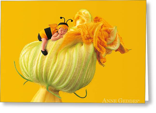 Bees Greeting Cards - Untitled Greeting Card by Anne Geddes