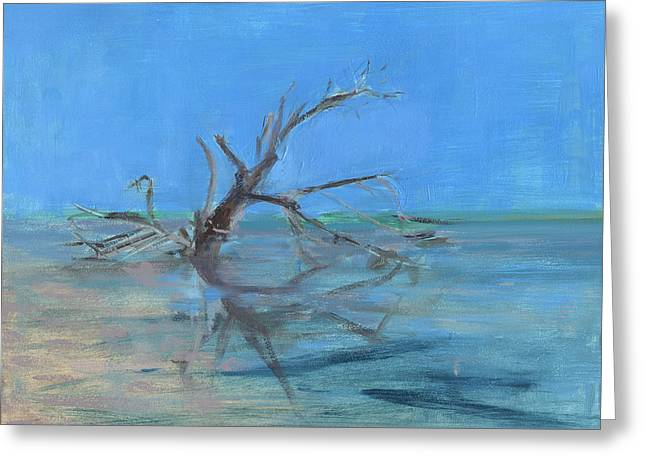 Florida Gulf Coast Greeting Cards - RCNpaintings.com Greeting Card by Chris N Rohrbach