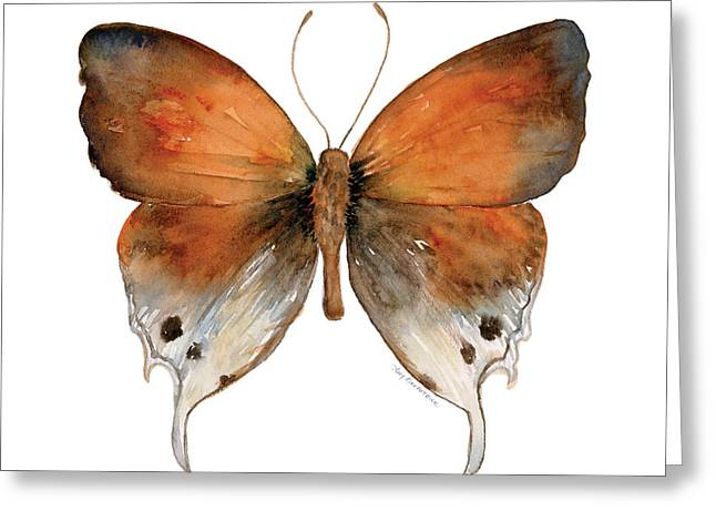 Background Paintings Greeting Cards - 47 Mantoides Gama Butterfly Greeting Card by Amy Kirkpatrick