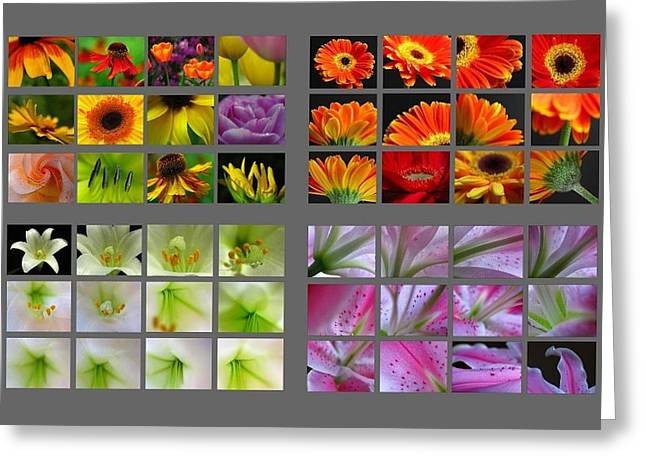 Floral Artwork Greeting Cards - 48 Beautiful and Inspiring Flower Photographs Greeting Card by Juergen Roth