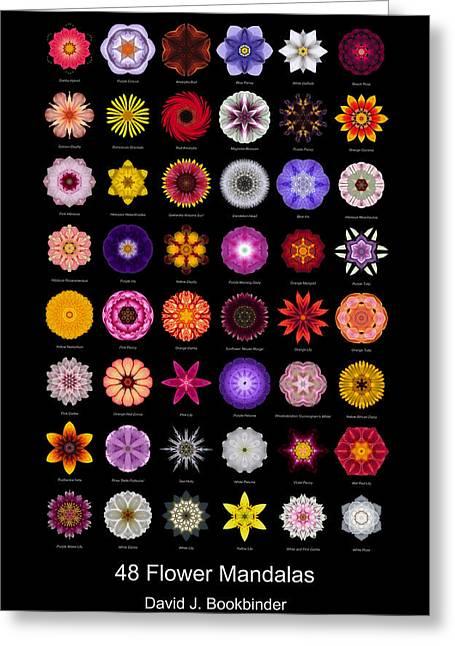 David J Bookbinder Greeting Cards - 48 Flower Mandalas Greeting Card by David J Bookbinder