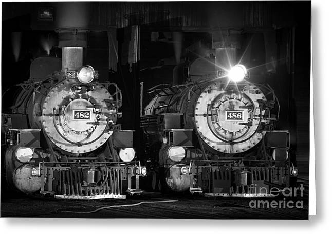 Durango Greeting Cards - 482 And 486 Greeting Card by Inge Johnsson