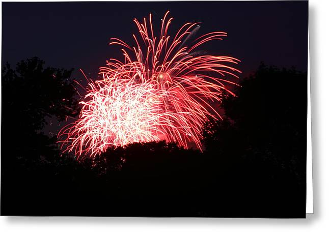 Artworks Greeting Cards - 4th of July Fireworks - 011311 Greeting Card by DC Photographer