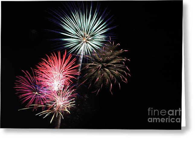 4th of July Greeting Card by Renee Chandler