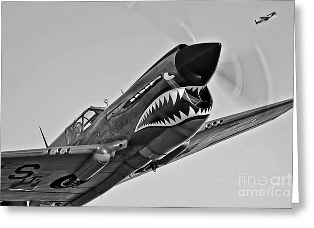 Curtiss Kittyhawk P-40 Greeting Cards - A Curtiss P-40e Warhawk In Flight Greeting Card by Scott Germain