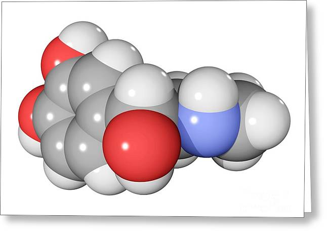 Adrenal Greeting Cards - Adrenaline Hormone Molecule Greeting Card by Laguna Design