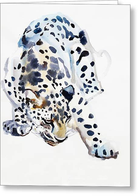 Panthera Greeting Cards - Arabian Leopard Greeting Card by Mark Adlington